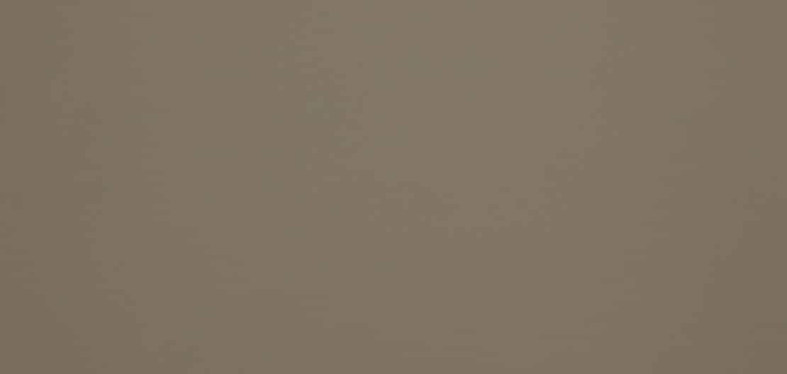 Fenix grigio londra